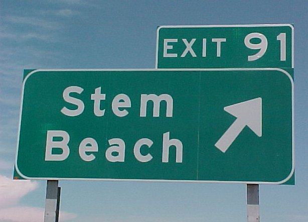 Stem Beach, Colorado