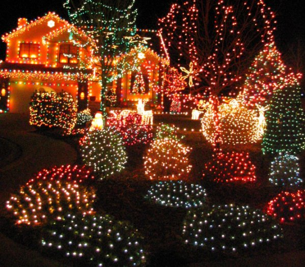 Christmas Lights Pictures: Christmas Lights In Colorado Springs, CO
